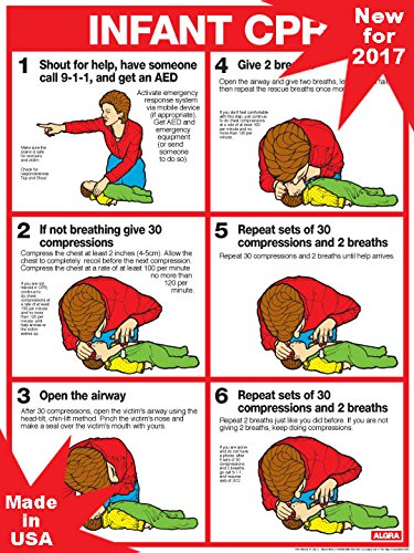 Cpr for Infants Laminated Poster - 2011