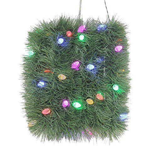 Color Changing Led Christmas Lights C6 in US - 9