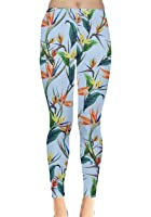 CowCow Womens Easter Eggs Rabbits Chicks Holiday Good Friday Leggings, XS-5XL
