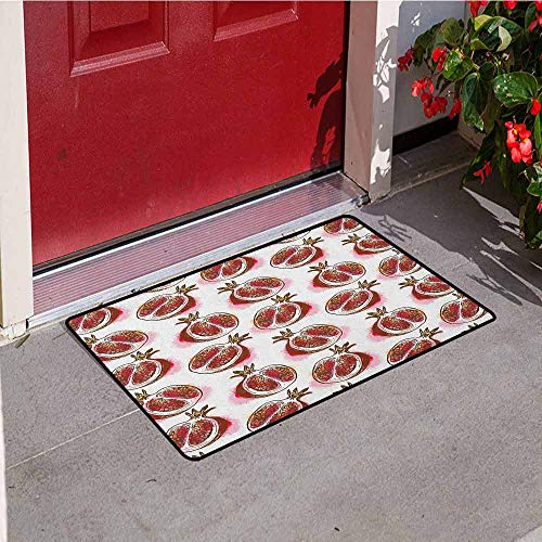 (GloriaJohnson Fruits Welcome Door mat Pomegranate Flowering Blurry Watercolor Mediterranean Taste Shrub Image Door mat is odorless and Durable W15.7 x L23.6 Inch Fuchsia Red Umber Rose)