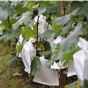 100 Unids Uvas de Jardín Bolsa de Protección de Frutas para Fruta Bosque Vegetal Cama Flor de Control de Plagas Bolsa de Malla Aislamiento de Insectos ...