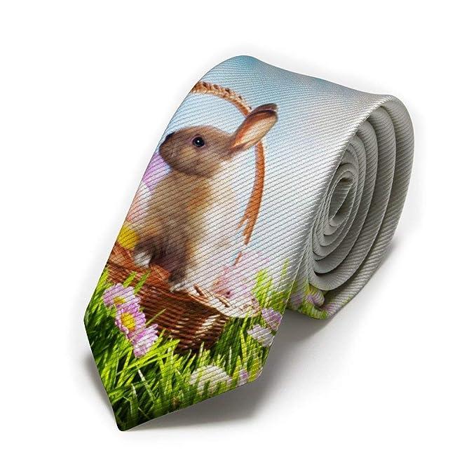 GZOSWLGS Huevos con conejo en canasta Corbata clásica para hombre ...