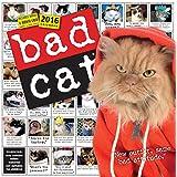 Bad Cat Wall Calendar 2016