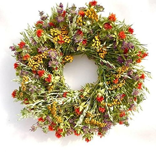 Garden Carnival All Natural Summer Dried Floral Wreath. Hand Made in The USA 22 Inch (Wreath Dried Floral)