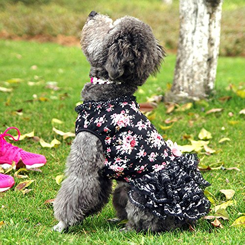 [Baiyu Cotton Floral&Lace Dog Clothes Pet Puppy Small Dog Cat Tutu Princess Skirt Dress Shirts Apparel Costumes for Dogs Black] (Halloween Costume Wearing Overalls)