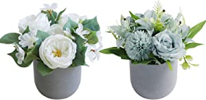 THE BLOOM TIMES 2 Pack Potted Artificial Flowers Decoration, Faux Flowers in Vase Fake Peony Roses Hydrangea Silk Floral Arrangements Centerpieces for Home Indoor Dining Table Living Room Spring Decor