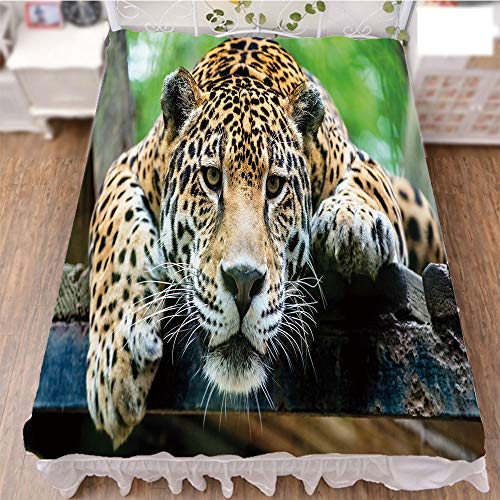 iPrint Bed Skirt Dust Ruffle Bed Wrap 3D Print,Wild Animal Carnivore Endangered Feline Safari,Best Modern Style Bed Skirt for Men and Women by 59''x78.7'' by iPrint