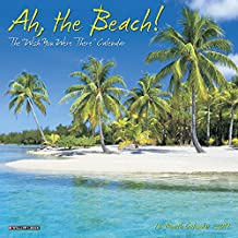 Ah The Beach! Mini 2019 Wall Calendar
