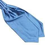 Sungpunet Polyester Silk Mens Solid Color Ties Ascot Cravat Necktie Scarf