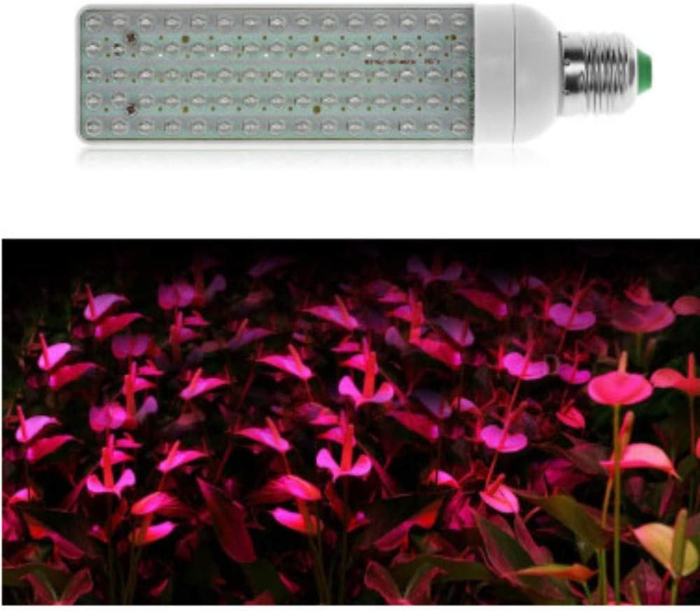xiadsk Luz de Planta de Agua Caliente Que Enciende la luz de la Planta de Agua Caliente para el huerto de Plantas médicas 1 Orden