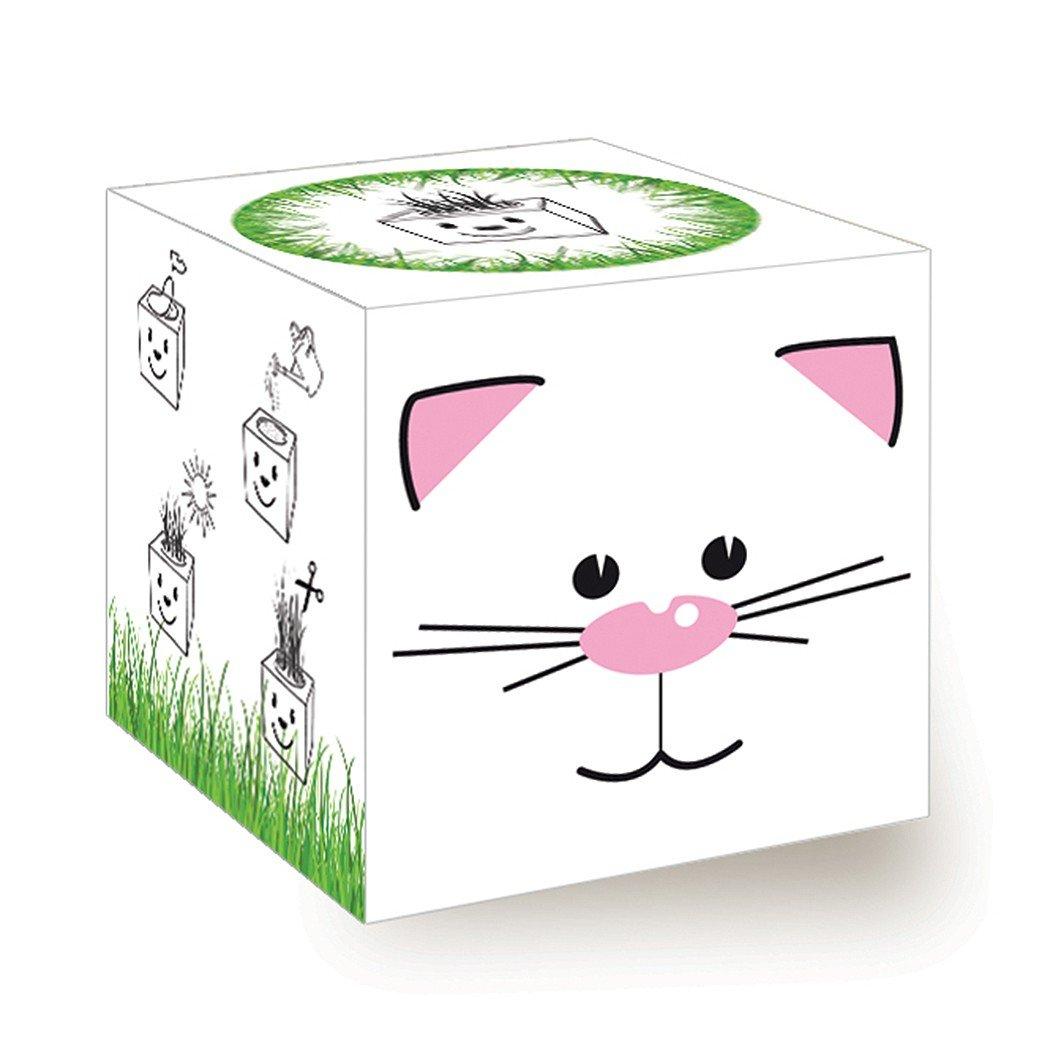 Funny Grass Cube - Katze Inventive Trading
