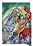 img - for Wolverine Epic Collection: Blood Debt book / textbook / text book