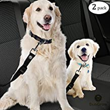 """2 Snug and Secure Adjustable Dog & Cat Seat Belts (19.6"""" to 31.6"""") by SunGrow - Hassle-free Universal Clip Feature Guarantees Safety of Pets : Comfortably Secures Pet while riding in a Car"""