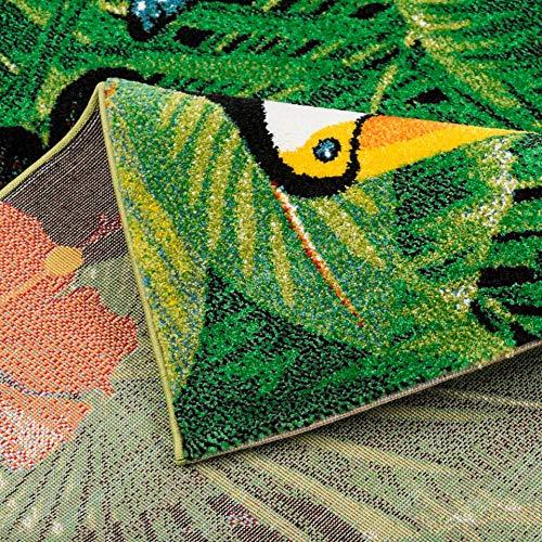 Pergamon Designer Teppich Faro Tropical Tukan Grün in 5 Größen Größen Größen 7872e2