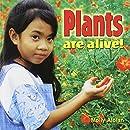 Plants Are Alive! (Plants Close-Up)
