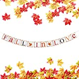 TMYSP Fall in Love Bunting Banner 150pcs Mixture Artificial Fall Maple Leaves Proposal Wedding Anniversary Engagement Valentines Day Prom Shower Thanksgiving Party Decor