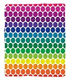Chaoran 1 Fleece Blanket on Amazon Super Silky Soft All Season Super Plush Illustration of Bright Rainbow Colored Dots Big Circlespots Play Kids Theme Fabric et