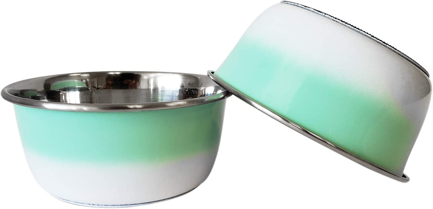 American Pet Supplies Set of 2 Deep Colored Stainless Steel Dog Bowls with Non-Skid Rubber Ring for Puppies and Dogs