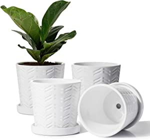 POTEY Ceramic Flower Pots - 4.8 Inch Cylinder Modern Indoor Planter Succulent Round Garden Container with Connected Saucer and Drain Hole- Set of 4, Glazed, White