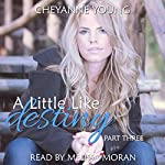 A Little like Destiny : Robin and Tyler, Book 3 | Cheyanne Young