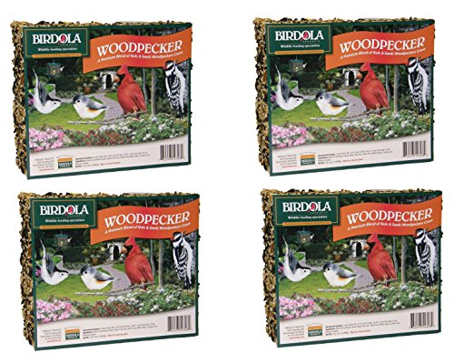 (4 Pack) Birdola Woodpecker Seed Cake, 2 Pounds each