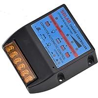 Regulador del Panel Solar, YCX-005 PWM Controlador de Carga Solar, 12V/24V Regulador Inteligente de Batería de Panel Solar, Protección de Sobrecarga Compensación de Temperatura(YCX-005-60A)