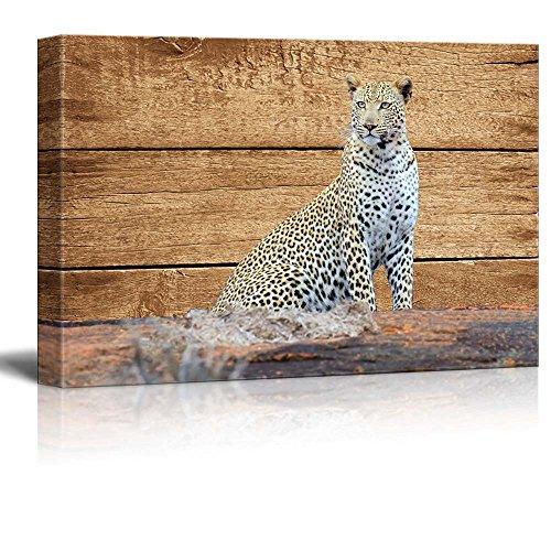 Rustic Sitting Leopard Wall Decor ation