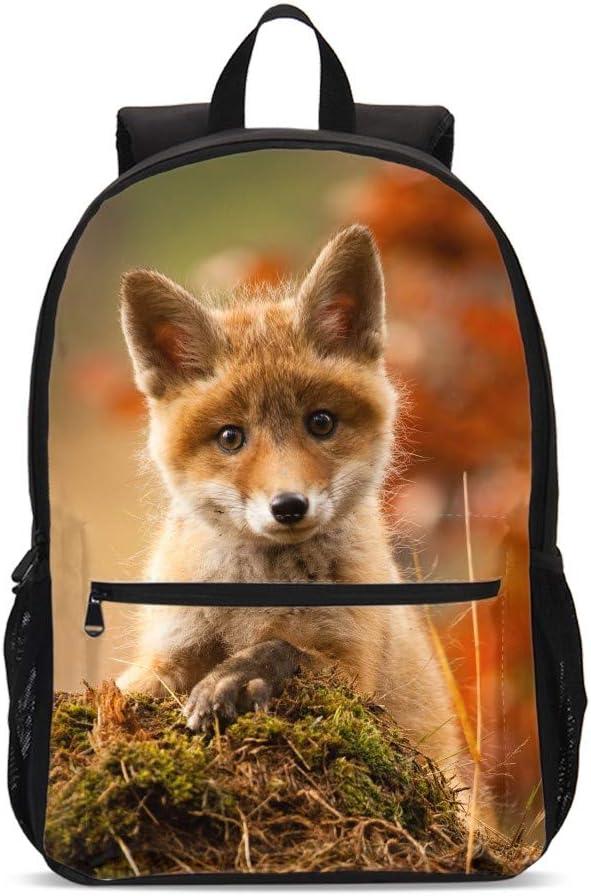 Delerain 3D Dog Corgi School Backpack Lightweight Travel Daypack Shoulder Bag 17 Inch Plus Laptop Bag Book bag for 1-6th Grade Boys Girls Back to School