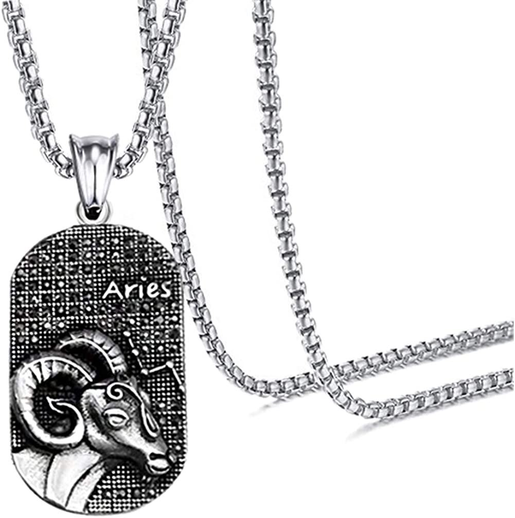 "Xusamss Hip Hop Titanium Steel Twelve Constellation Dog Tag Pendant Crystal Necklace,24"" Chain"