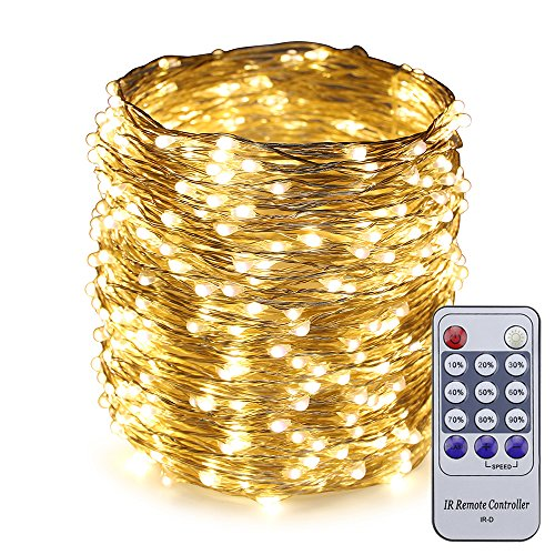 Starry Strands - ER CHEN 165ft Led String Lights,500 Led Starry Lights on 50M Silvery Copper Wire String Lights + 12V DC Power Adapter + Remote Control(Warm White)