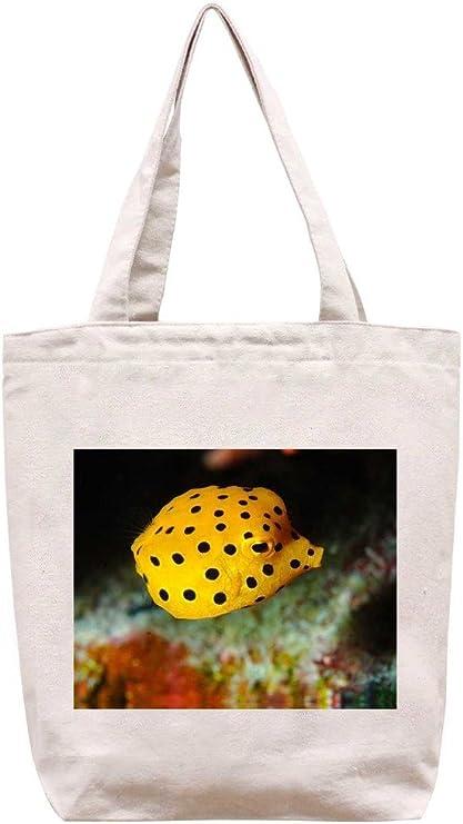 Chromodoris amarillo y negro lunares – algodón Canvas Tote Bag: Amazon.es: Hogar