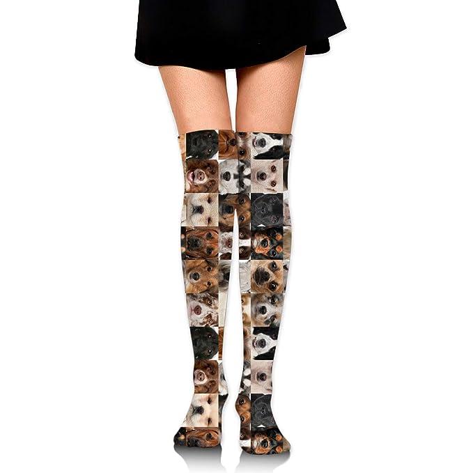 8cd4c113f6e Womens Dog Family Sexy Long Socks Over The Knee High Boot Socks Cosplay  Socks at Amazon Women s Clothing store