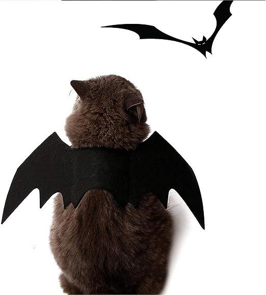 UTOPIAY Disfraz de Perro de Halloween, Impresionante Ropa de Alas ...