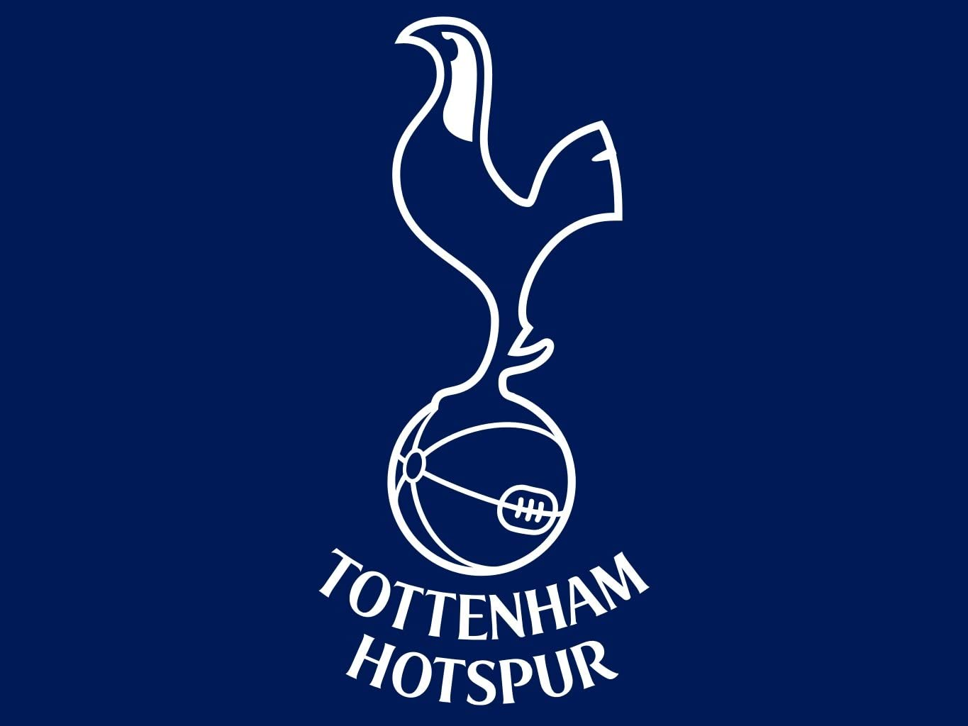 Tottenham Hotspur Mouse Mat Size 24cm X 20cm Amazon Co Uk Electronics