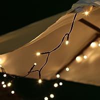 Guirlande Solaire 10m 100 LED par Festive Lights (Blanc Chaud)