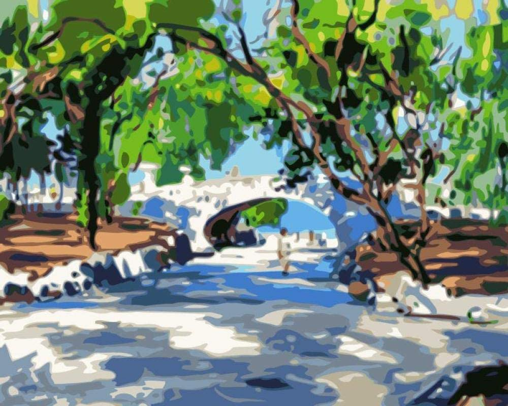 Pintar con Numeros Paisaje Natural con Pintura Acrílica para Decoración del Hogar Pintar por Números para Niños Adultos Kit Sin Marco 40,6X50,8 Cm