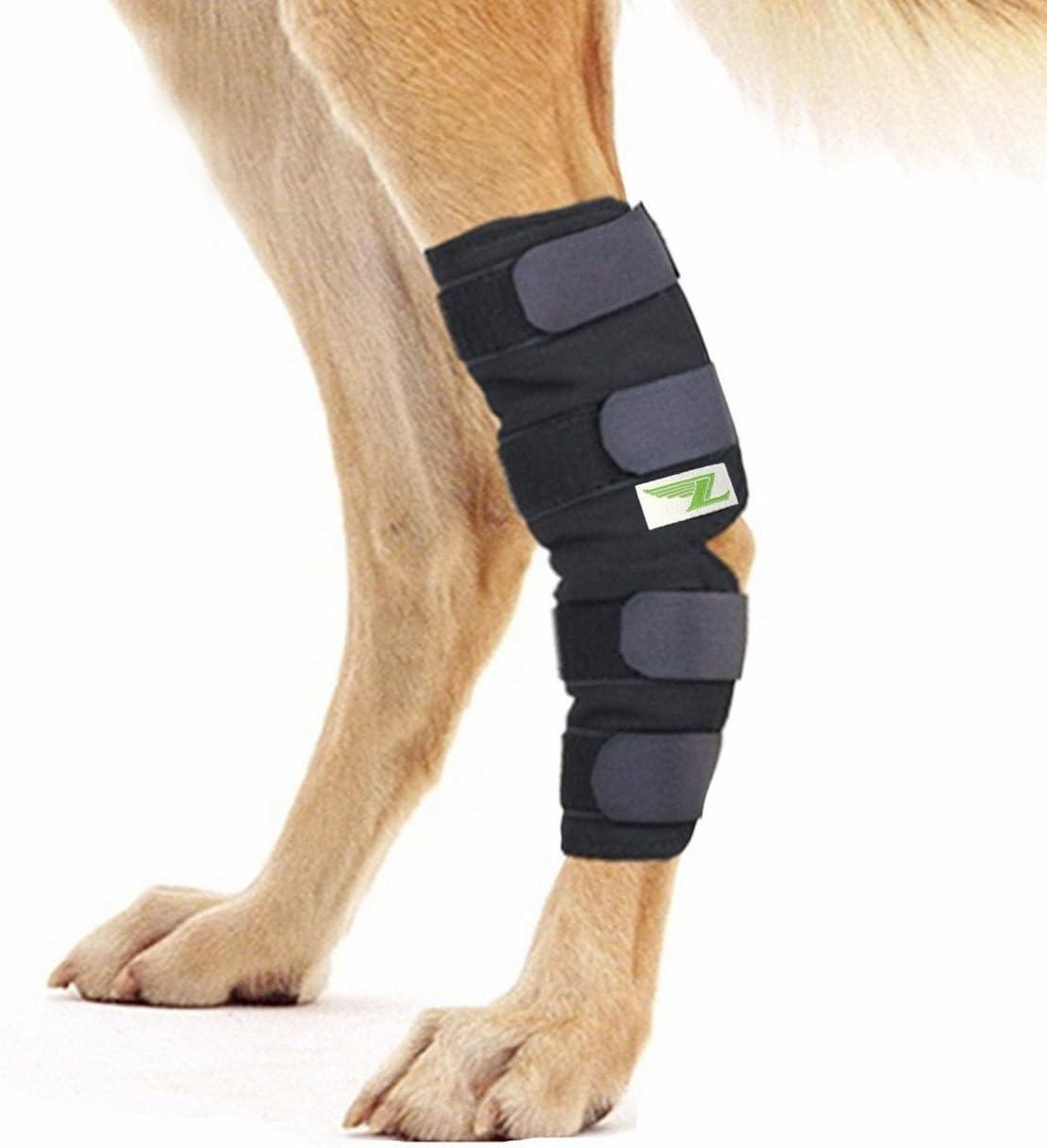 RockPet Órtesis Curadora Articulación Pata Trasera de Perro Envoltura Canina de Corvejón (M)