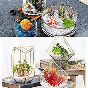 Ciaoed Artificial Succulent Plants,12 Pcs Succulants Artificial Assorted Blue Unpotted Large Fake Succulents Plant Faux Succulent Assorted for Flower Arrangements Decor and Home Decoration 5