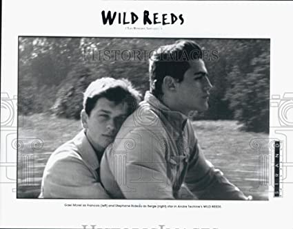 Amazon.com: 1995 Press Photo Actors Gael Morel And Stephane Rideau ...