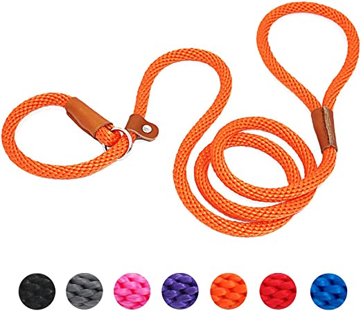 lynxking Dog Leash Slip Rope Lead Leash Strong