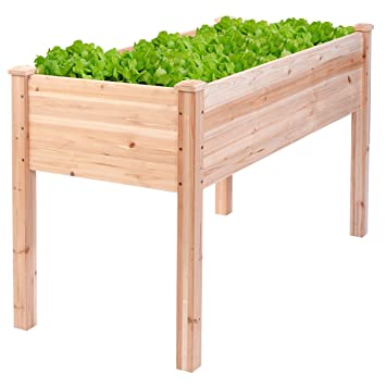 Amazoncom Wooden Raised Vegetable Garden Bed Elevated Planter