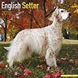 English Setter Calendar 2018 - Dog Breed Calendar - Premium Wall Calendar 2017-2018