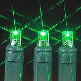 Novelty Lights 100 Light LED Christmas Mini Light