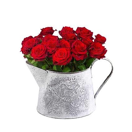 225 & Amazon.com : Best Quality - Flower Pots \u0026 Planters - Vintage ...