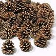 Piñas Naturales para Decoración Navideña - 1 kg (50 Unidades)