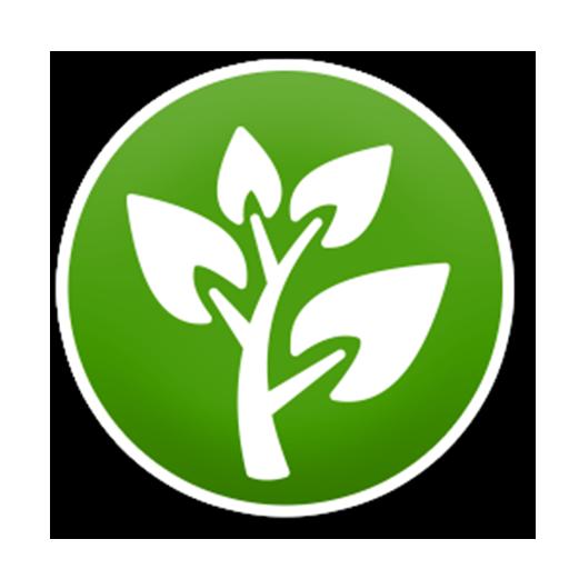 using-houseplants