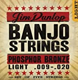 Jim Dunlop DJPS10 10 Gauge Phosphor Bronze Banjo String, Light (Single)