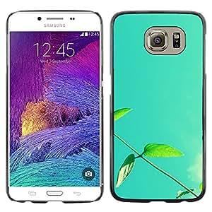 TopCaseStore / la caja del caucho duro de la cubierta de protección de la piel - Plant Nature Forrest Flower 13 - Samsung Galaxy S6 SM-G920