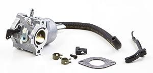 Briggs & Stratton 794572 Carburetor Replaces 793224 791888 792358 792171