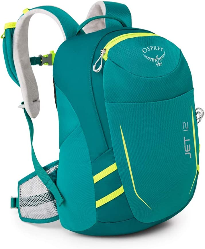 Top 10 Best Travel Backpack For Kids (2020 Reviews & Buying Guide) 8